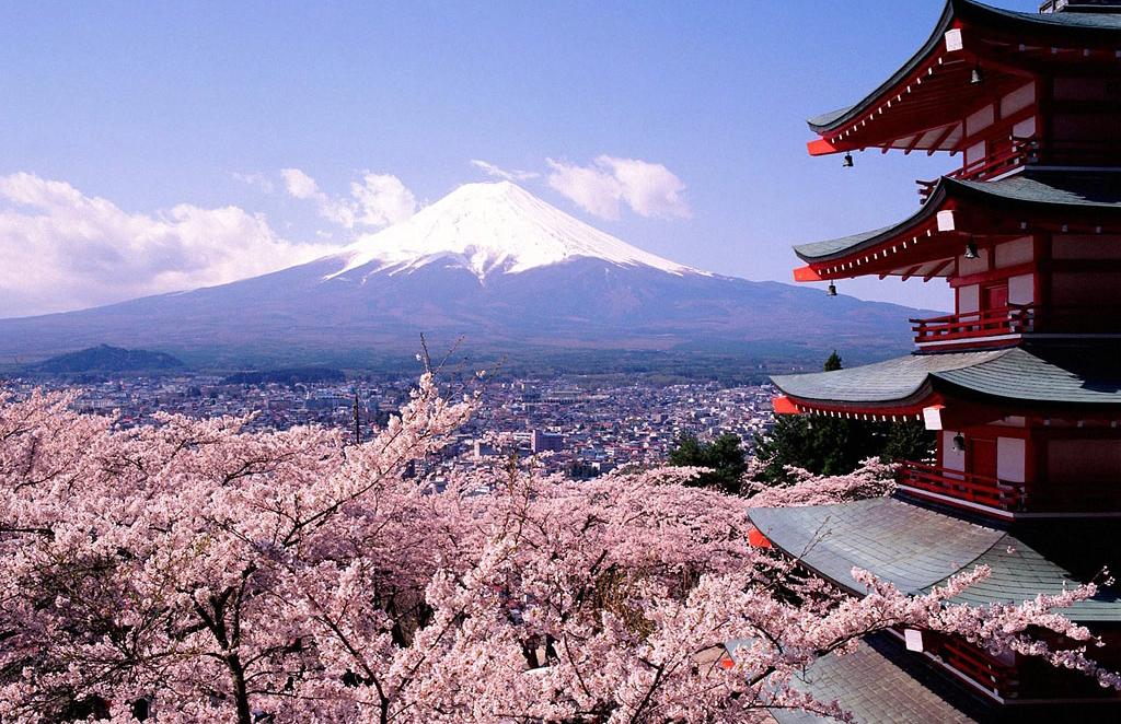 Почему в Японии нет мародёрства?