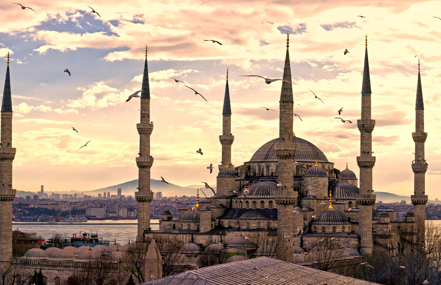 Не нужен нам берег турецкий