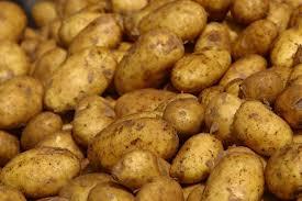 Медики: картофель – лучшее средство от язвы желудка