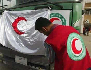 «EurasiaNet»: Красный полумесяц на службе у Турции