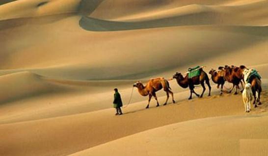 9 качеств сподвижников пророка Мухаммада