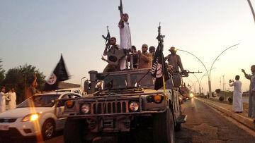 Лидеры ИГ взяли на себя ответственность за атаки Израиля