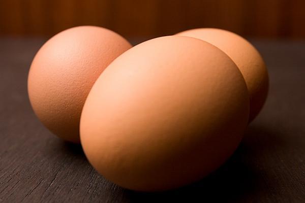 Иртышская птицефабрика предложит Турции халяльные яйца