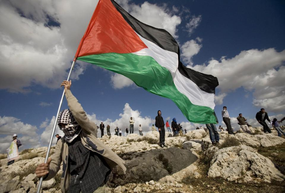 МИД Франции: палестино-израильский кризис будет решаться в Москве