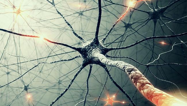 Повреждение нервных клеток