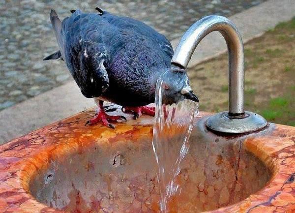 Аномальная жара в Татарстане продержится еще неделю — Росгидромет