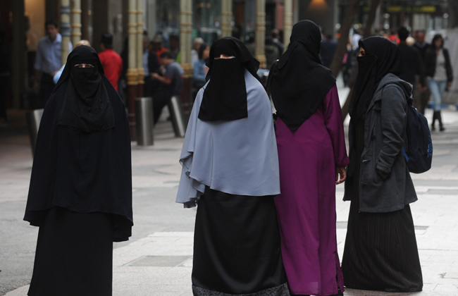 Нижняя палата парламента Нидерландов одобрила запрет наношение бурки иникаба